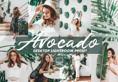 Avocado Lightroom Presets (3)